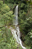 在别墅Gregoriana的瀑布 图库摄影