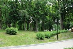 公园,灯 免版税库存图片