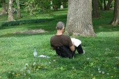 公园读书 免版税库存图片