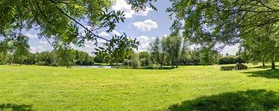 公园`的全景视图Wijdse Weide `在祖特尔梅尔,荷兰 免版税库存照片