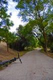 公园 路 树 风景 秋天 天空 打电话的屏幕保护程序 对您的桌面的屏幕保护程序 美好的风景在公园 字符 免版税库存图片
