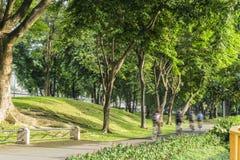 公园 免版税图库摄影