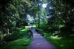 公园 库存照片