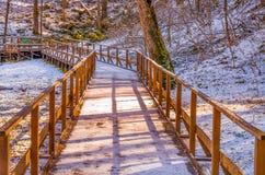 公园Jankovac 免版税图库摄影