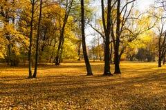 公园Julianowski,罗兹,波兰 库存照片