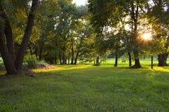 公园Kolomenskoye 免版税库存照片