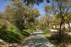 公园Moret,西班牙 库存照片