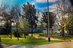公园Sishane树和草坪地区Beyoglu伊斯坦布尔 库存图片