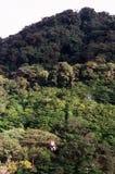 公园ziplining天空的牛拉车旅行 免版税库存照片