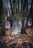 公墓在华沙 免版税库存照片