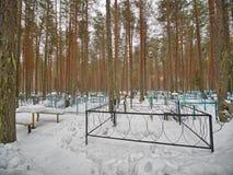 公墓在森林里 免版税库存图片
