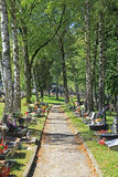 公墓在镇Ruzomberok,斯洛伐克里 库存图片