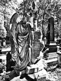 公墓天使 在黑白的艺术性的神色 库存照片