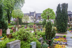 公墓斯坦上午莱茵瑞士 库存照片