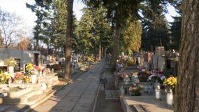 公墓道路 库存图片