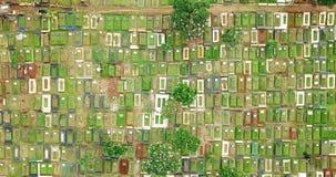 公墓鸟瞰图在雅加达市 影视素材