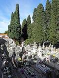 公墓Boninovo,杜布罗夫尼克,克罗地亚, 10 免版税库存照片