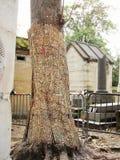 公墓Pere Lachaise在巴黎 免版税图库摄影