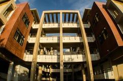 公寓在大学 库存照片