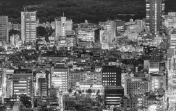 公寓结构大厦大厦具体玻璃高日本现代住宅上升钢东京塔耸立 城市大厦美好的鸟瞰图在晚上 免版税库存图片