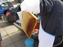 公平的蜂蜜 图库摄影