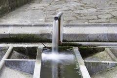 公开共同水池在波尔图 免版税图库摄影