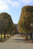 公开城市公园在维也纳 库存图片
