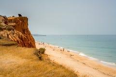 公开海滩的人们 免版税库存图片