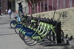 公开街道自行车租务西雅图 库存图片