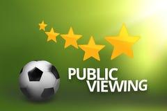 公开观察橄榄球足球 图库摄影
