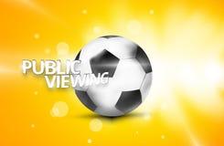 公开观察橄榄球足球3D 图库摄影