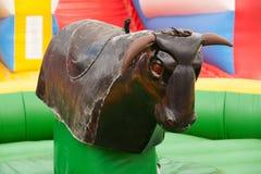 公牛乘驾 免版税库存照片