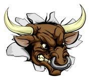 公牛充电的墙壁 免版税库存照片