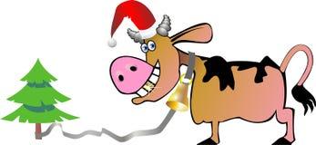 公牛圣诞节 库存图片
