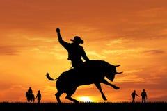 公牛在日落的车手剪影 免版税库存照片