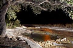 公牛小河夜橡树创造性的照明设备风景 图库摄影