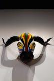 公牛面具Mendoza 免版税图库摄影