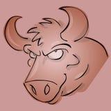 公牛 免版税库存图片