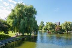 公用公园湖的视图在波士顿 免版税库存照片