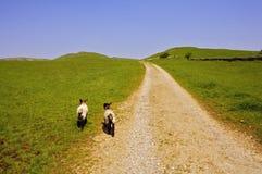 公用derbysh地区国家公园峰顶thorpe村庄 图库摄影