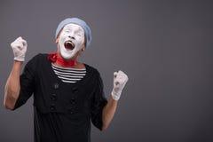 公笑剧白色滑稽的面孔画象和 免版税图库摄影