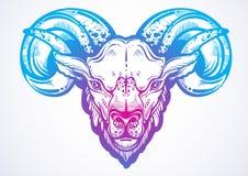 公羊的手拉的美丽的艺术品 高详细的线性样式图象 被隔绝的色情传染媒介例证 纹身花刺设计, a 免版税库存照片