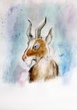 公羊的色的剪影 库存图片
