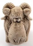 公羊绵羊 库存图片