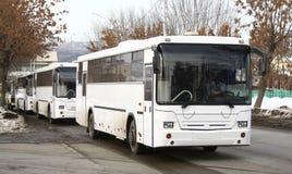 公车运送白色 库存图片