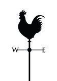 黑公鸡剪影 图库摄影