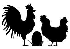 公鸡和母鸡剪影 库存图片