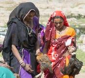 公鸡由tribals的待售 免版税库存照片