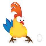 公鸡鸡蛋 免版税库存照片