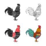 公鸡1的剪影 免版税库存照片